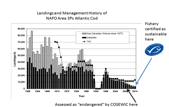 Landings and Management History of NAFO Area 3Ps Atlantic Cod