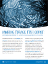 Making Forage Fish Count